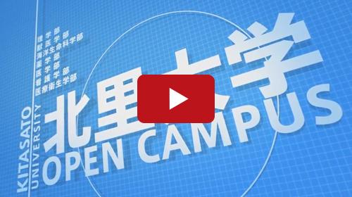 大学オープンキャンパスの動画広告